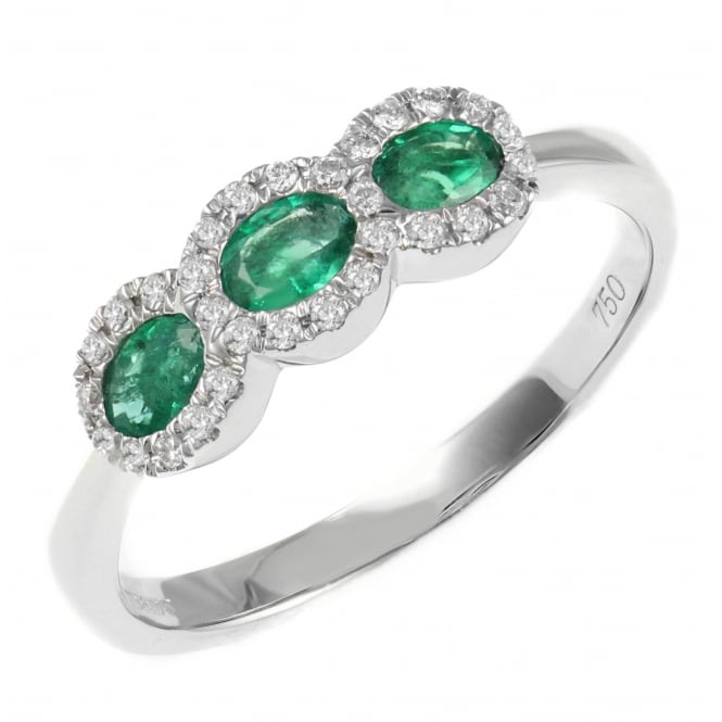 18ct white gold 0.45ct emerald & 0.16ct diamond cluster ring.